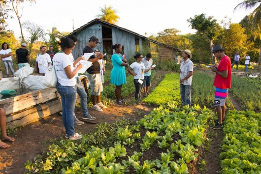 I Encontro Tocantinense de Agroecologia